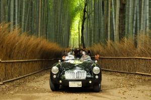 京都・嵐山の竹林の小径を走る MG MGA